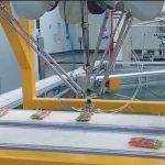 delta-robot-palletizer