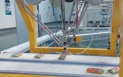 Berbagai Mitos Tentang Delta Robot Palletizer